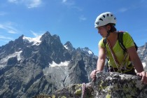 Blick vom Tete de Vallon zum Mont Pelvoux 3943m, dessen Überschreitung wir ein paar Tage später durchführen konnten.
