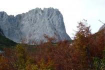 Die Karlspitze oberhalb der Wochenbrunner Alm.