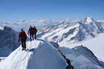 Im Mittelgrund rechts das mächtige Aletschhorn.