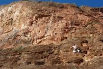 """Leicht geneigte und """"soft"""" bewertete Kletterei in den Sektoren Hospital und Red Rock"""