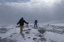 Der Wind hat auch den ganzen Pulverschnee im Gipfelbereich verblasen.