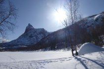 Die letzte Skitour war nochmals ein Höhepunkt: Zum Rombakstotta 1230m, dem Matterhorn über Narvik.