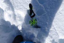 Nach dem Neuschneefall am Wochenende: 90cm in Innervillgraten